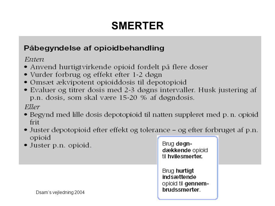 SMERTER Dsam's vejledning 2004
