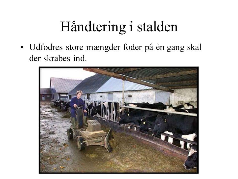 Håndtering i stalden Udfodres store mængder foder på èn gang skal der skrabes ind.