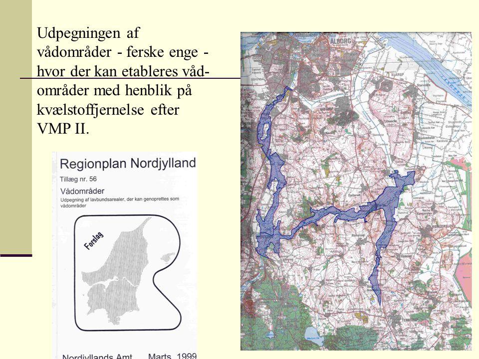 Udpegningen af vådområder - ferske enge - hvor der kan etableres våd-områder med henblik på kvælstoffjernelse efter VMP II.