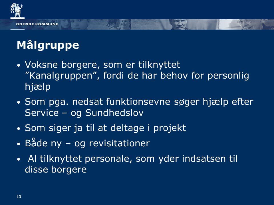 Målgruppe Voksne borgere, som er tilknyttet Kanalgruppen , fordi de har behov for personlig hjælp.