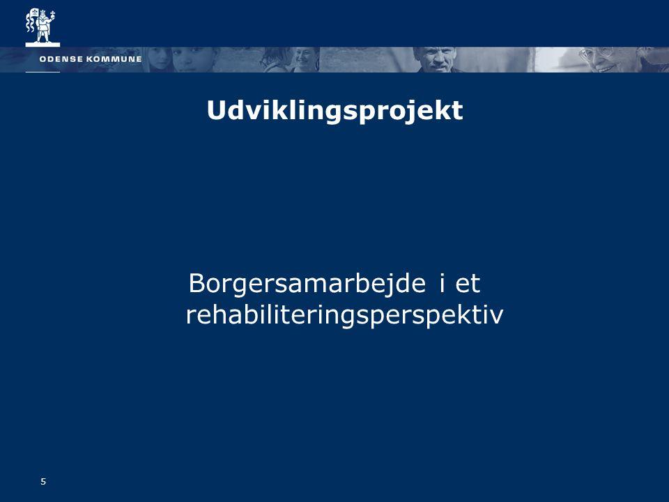 Borgersamarbejde i et rehabiliteringsperspektiv