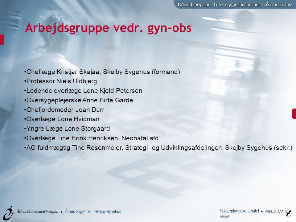 Arbejdsgruppe vedr. gyn-obs