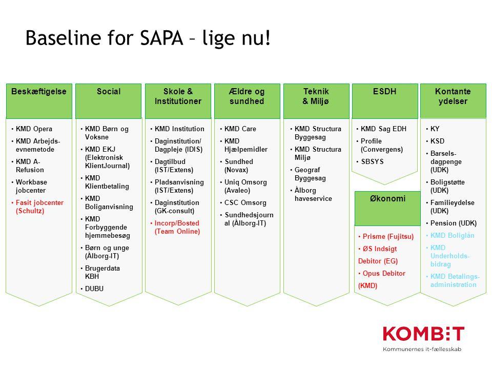 Baseline for SAPA – lige nu!