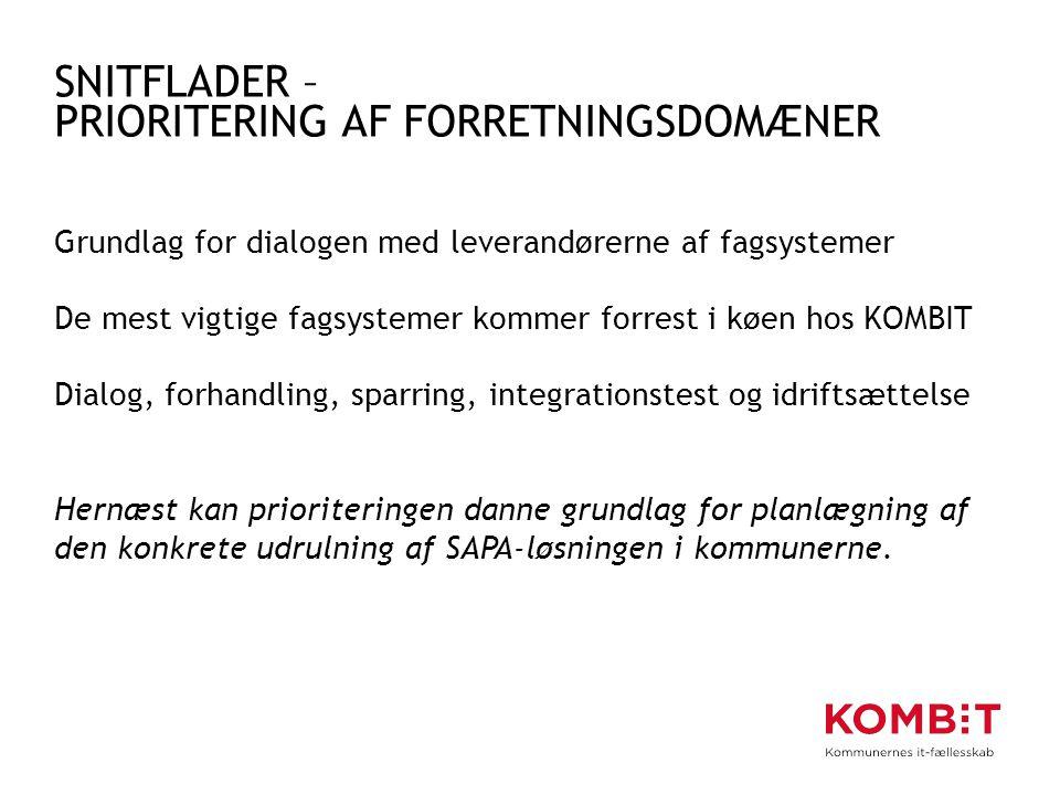 SNITFLADER – PRIORITERING AF FORRETNINGSDOMÆNER