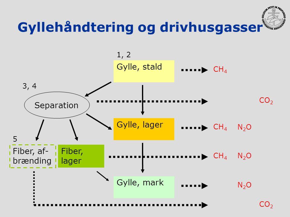 Gyllehåndtering og drivhusgasser