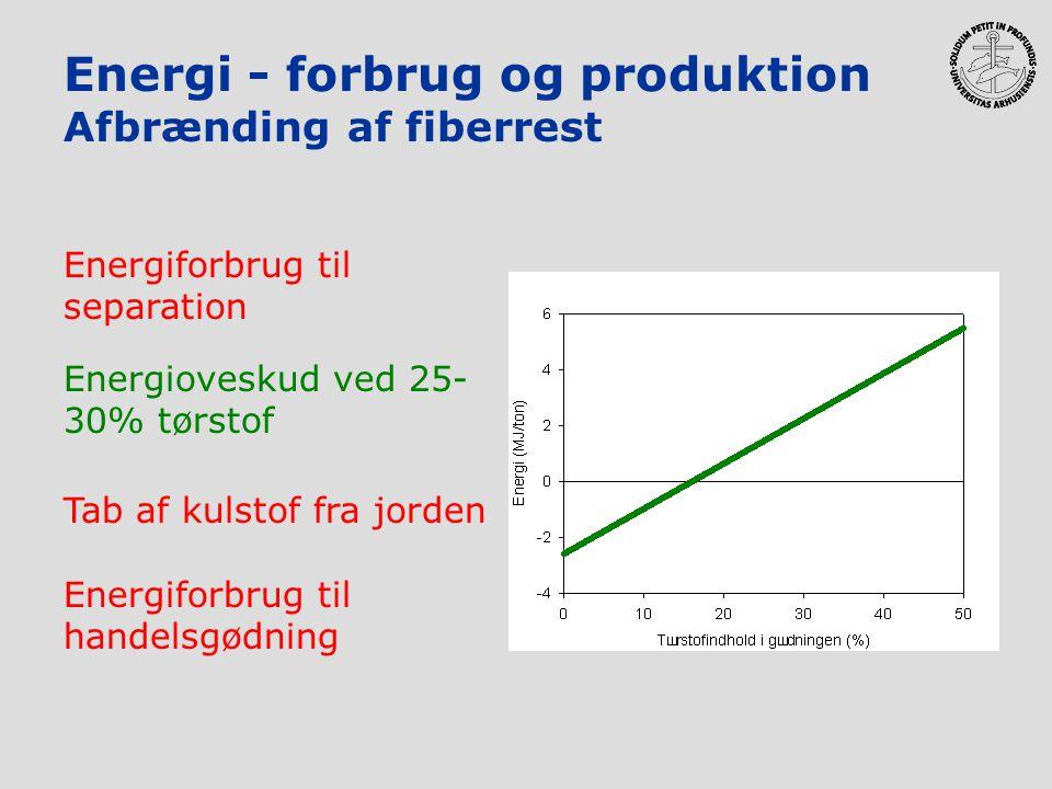Energi - forbrug og produktion Afbrænding af fiberrest