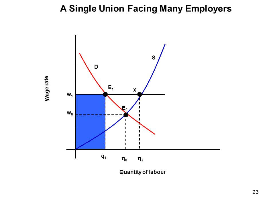 A Single Union Facing Many Employers
