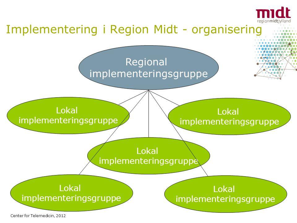Implementering i Region Midt - organisering