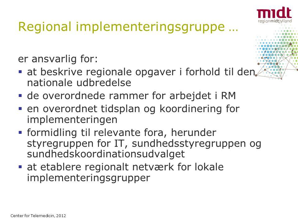 Regional implementeringsgruppe …
