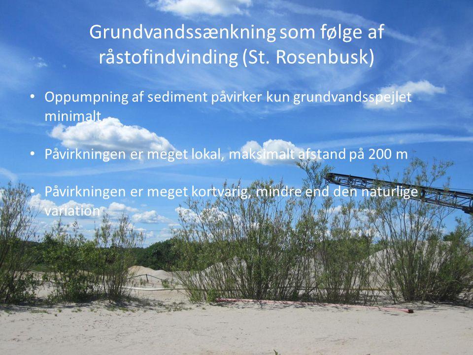 Grundvandssænkning som følge af råstofindvinding (St. Rosenbusk)