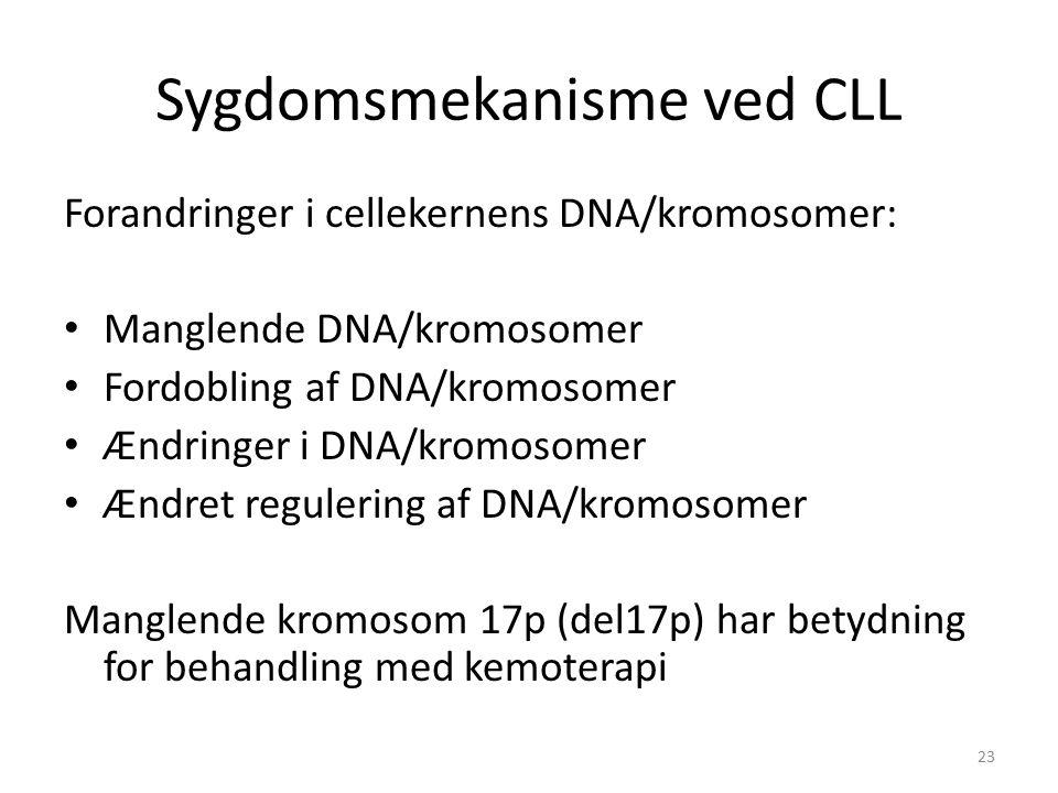 Sygdomsmekanisme ved CLL