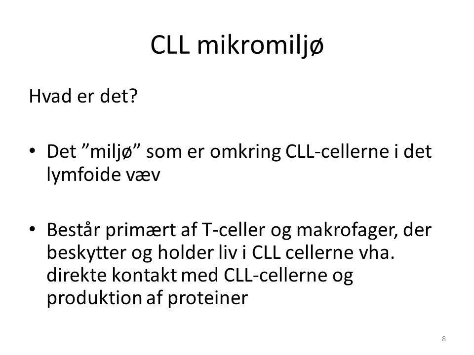 CLL mikromiljø Hvad er det