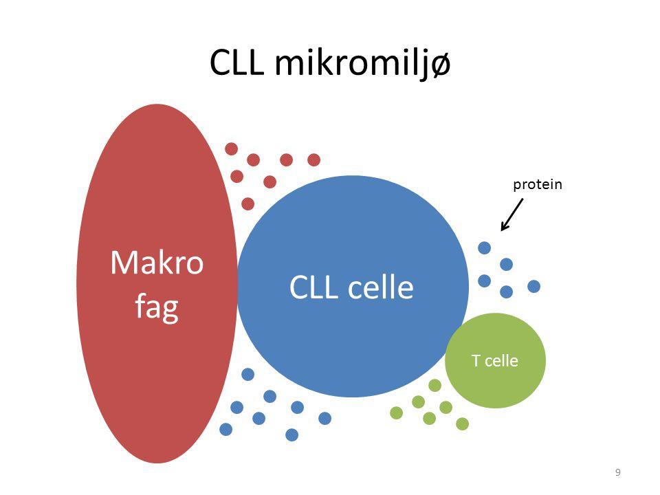 CLL mikromiljø Makrofag protein CLL celle T celle