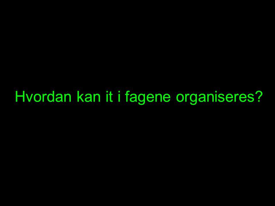 Hvordan kan it i fagene organiseres
