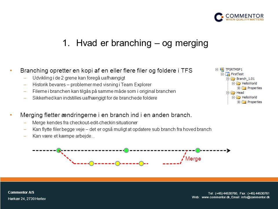 Hvad er branching – og merging
