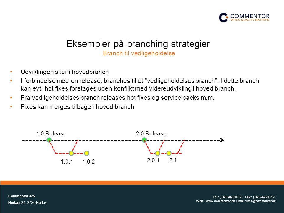 Eksempler på branching strategier Branch til vedligeholdelse