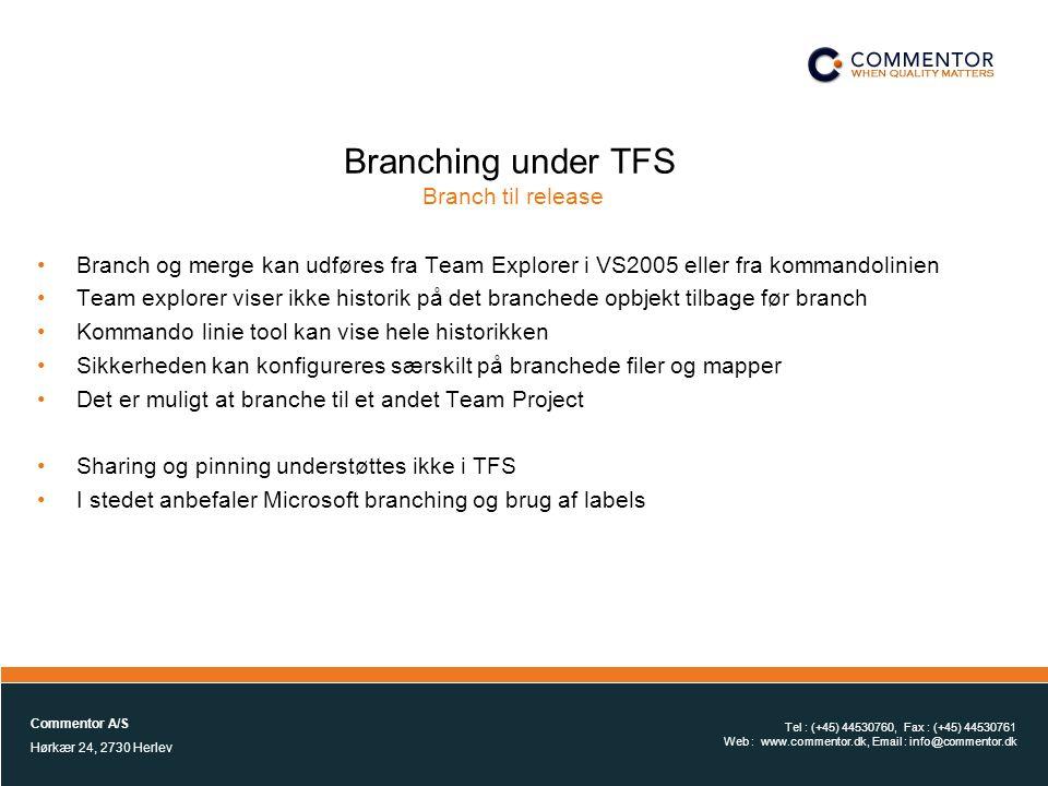 Branching under TFS Branch til release