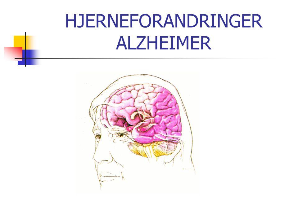 HJERNEFORANDRINGER ALZHEIMER
