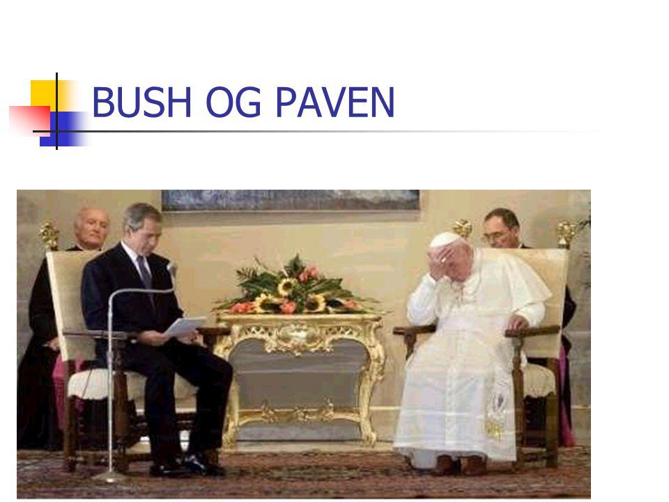 BUSH OG PAVEN