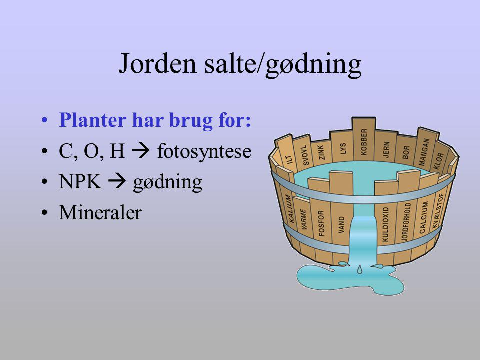 Jorden salte/gødning Planter har brug for: C, O, H  fotosyntese