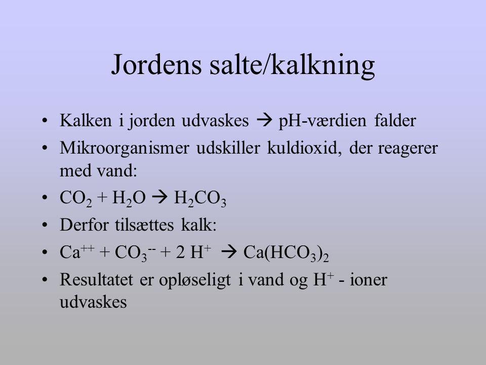 Jordens salte/kalkning
