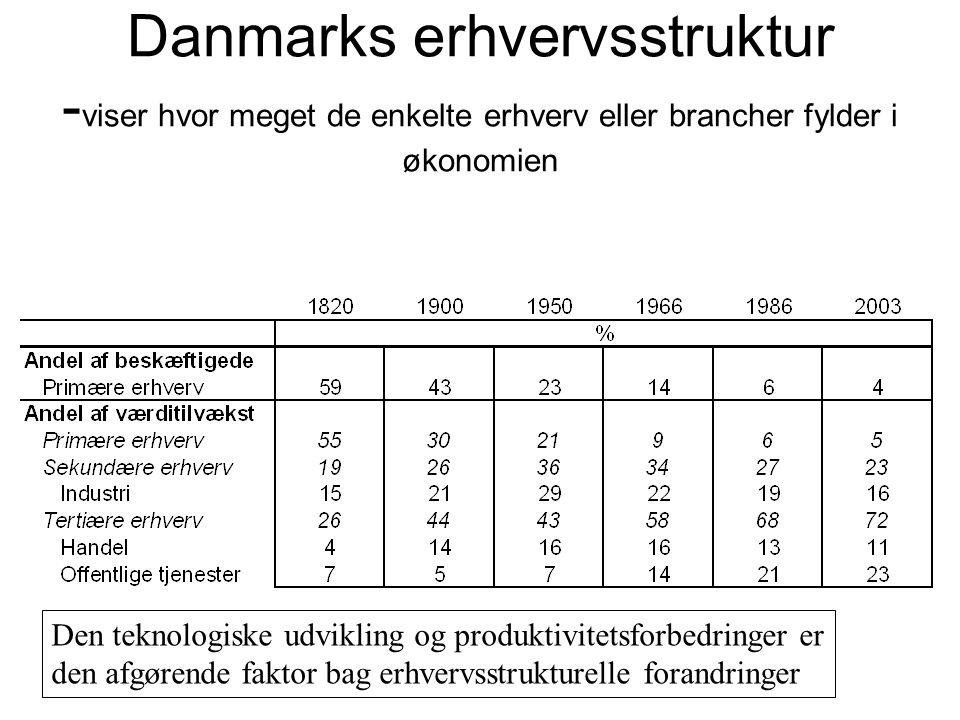 Danmarks erhvervsstruktur -viser hvor meget de enkelte erhverv eller brancher fylder i økonomien