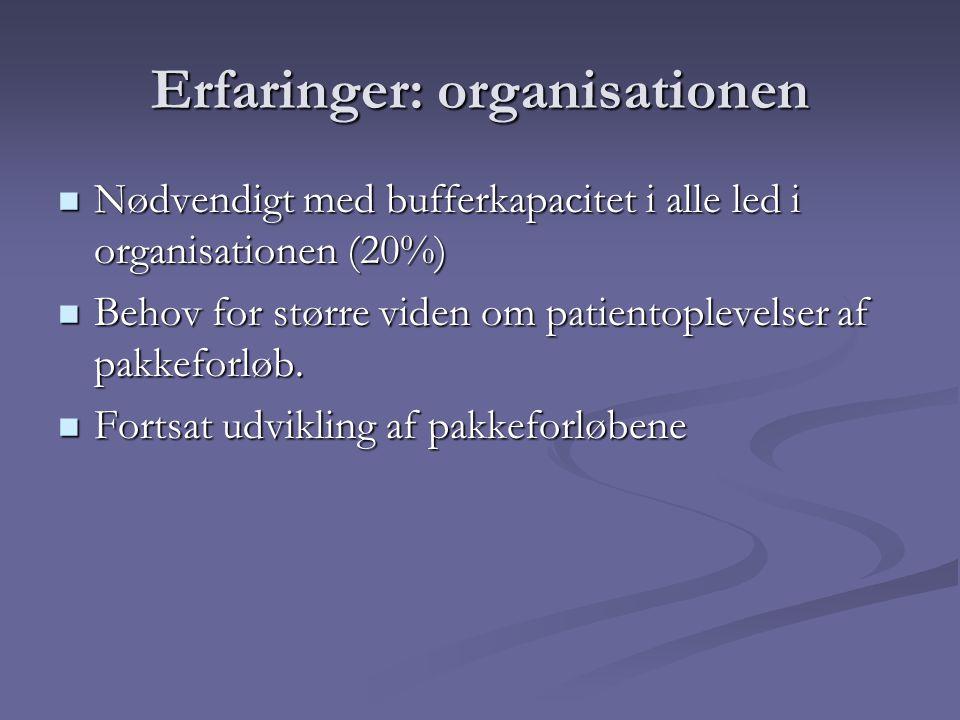 Erfaringer: organisationen