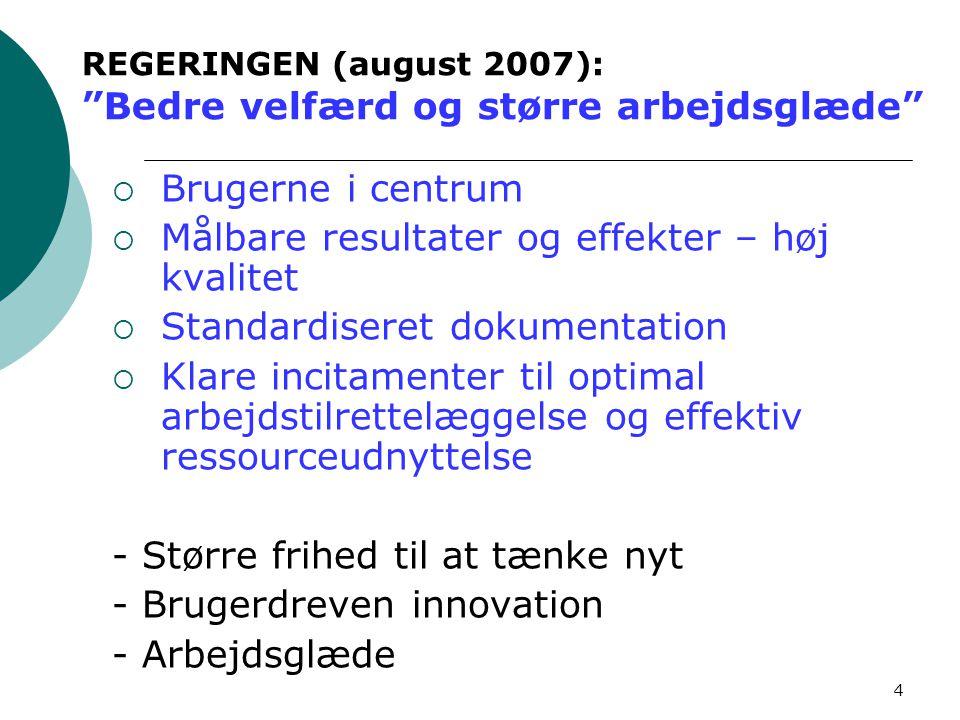 REGERINGEN (august 2007): Bedre velfærd og større arbejdsglæde