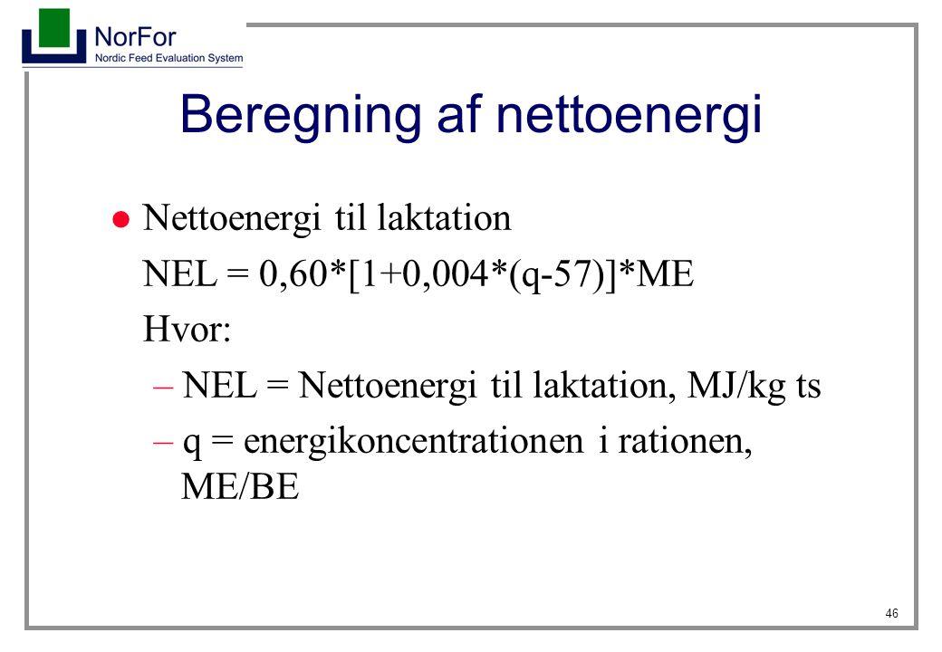 Beregning af nettoenergi