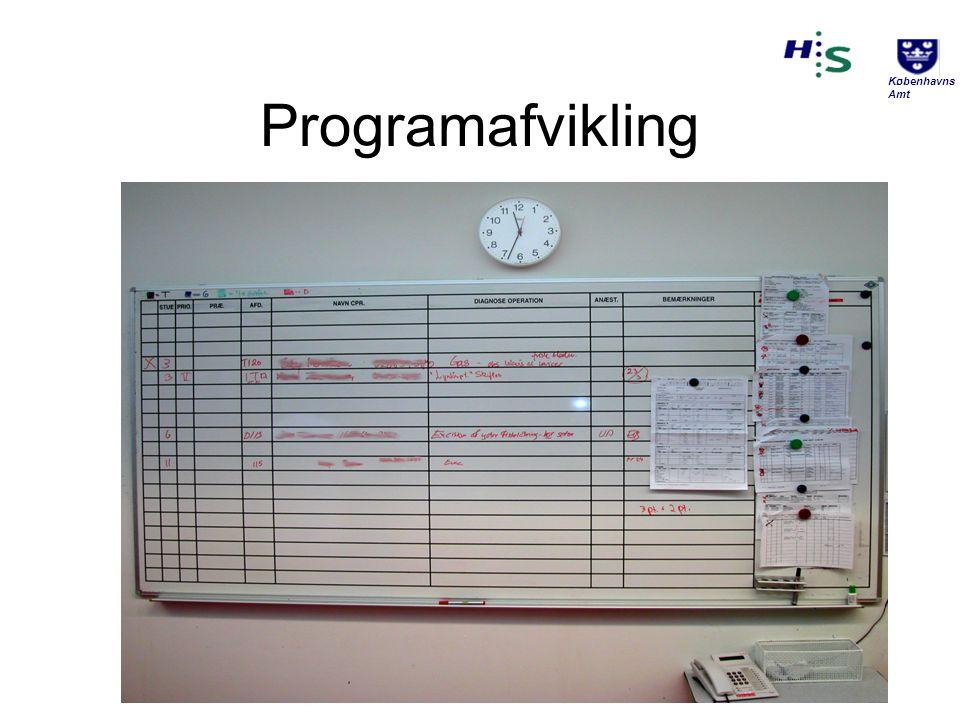 Programafvikling