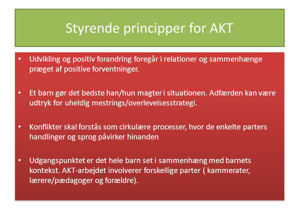 Styrende principper for AKT