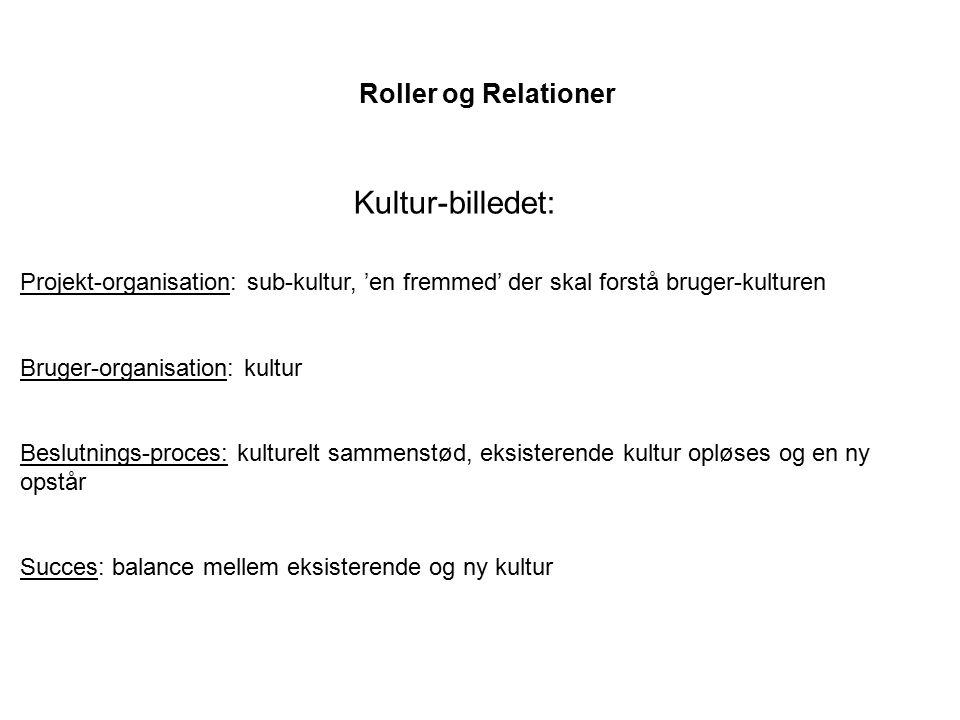 Kultur-billedet: Roller og Relationer