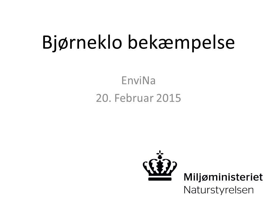 Bjørneklo bekæmpelse EnviNa 20. Februar 2015