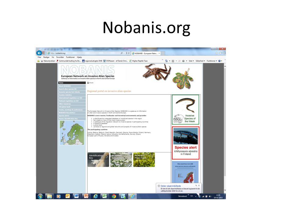 Nobanis.org