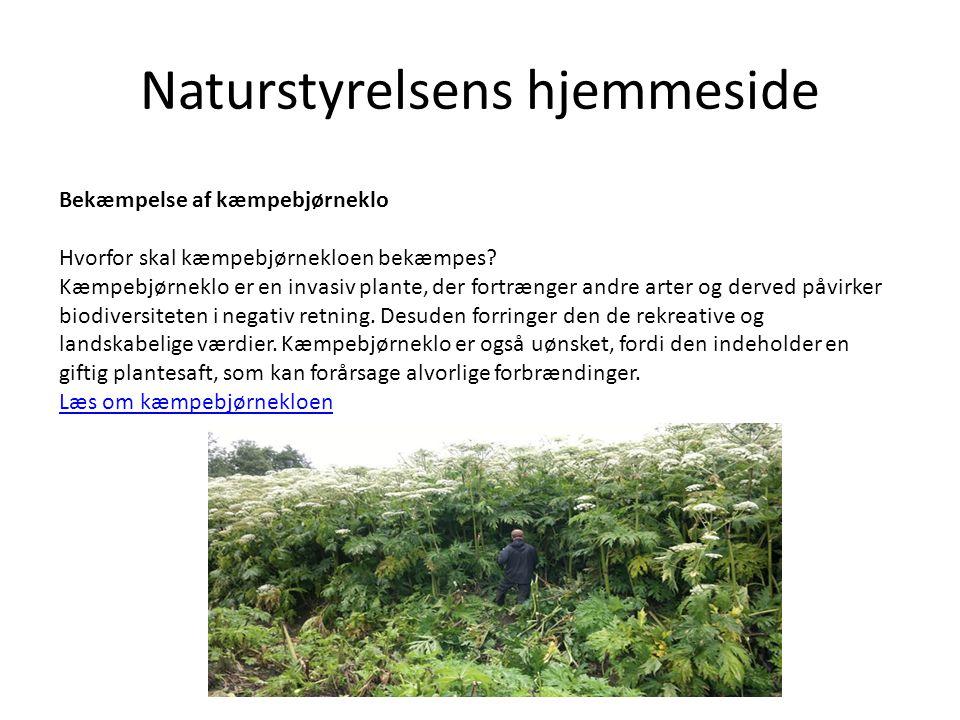 Naturstyrelsens hjemmeside