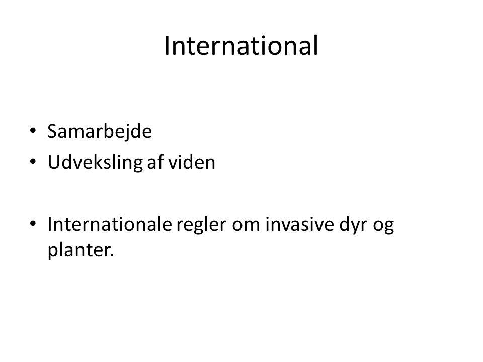 International Samarbejde Udveksling af viden
