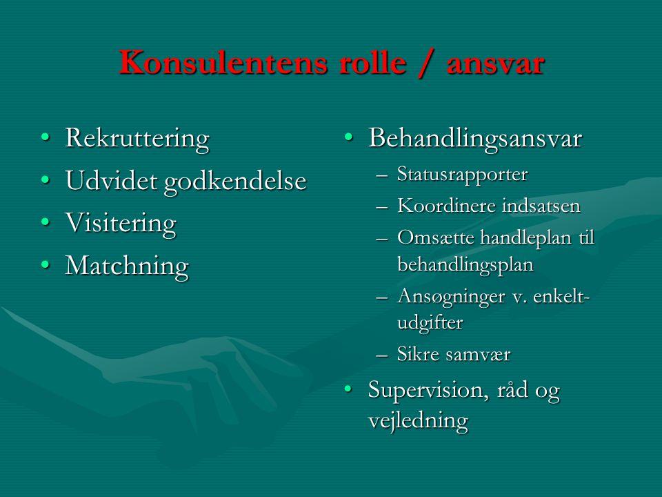 Konsulentens rolle / ansvar
