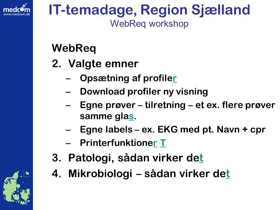 IT-temadage, Region Sjælland