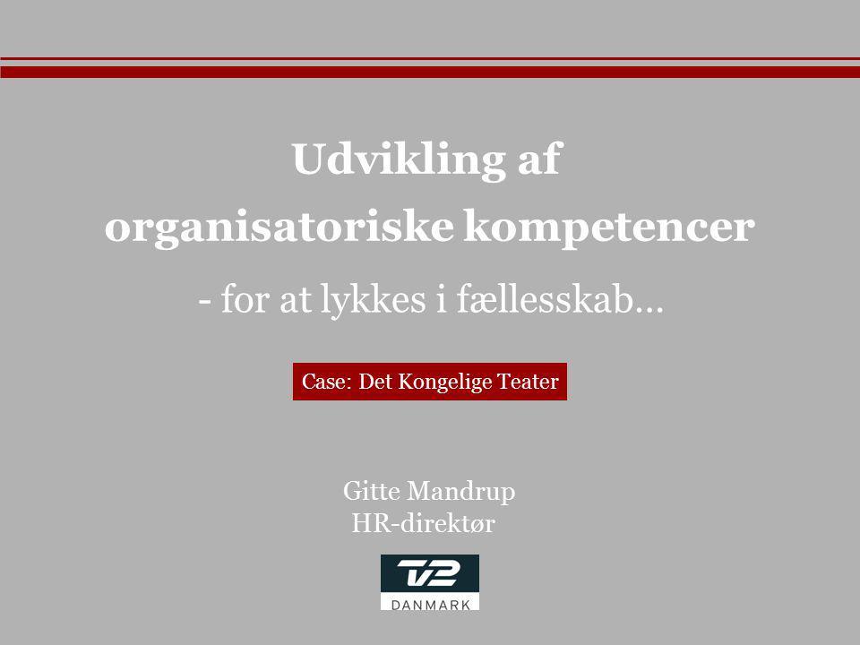 organisatoriske kompetencer