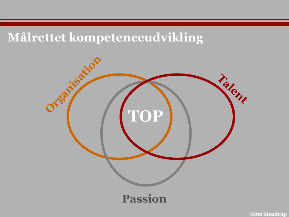 TOP Målrettet kompetenceudvikling Organisation Talent Passion