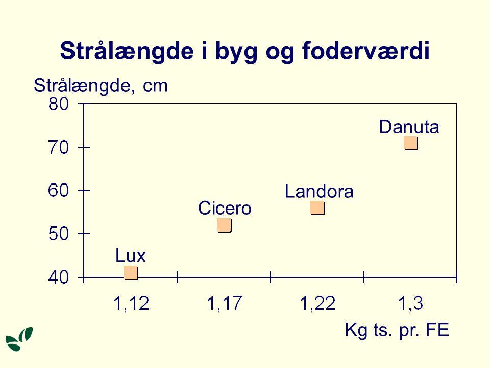 Strålængde i byg og foderværdi