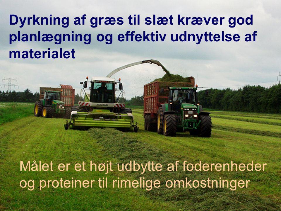 Dyrkning af græs til slæt kræver god planlægning og effektiv udnyttelse af materialet