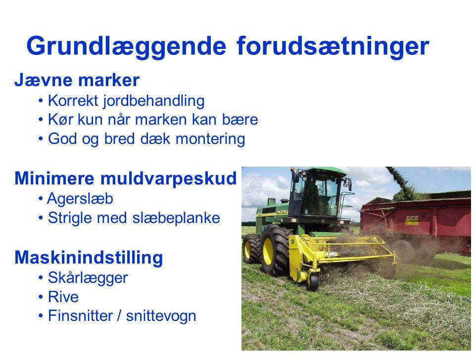 Skårlægning og rivning -af grønafgrøder uden sand - ppt download