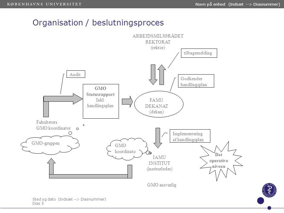 Organisation / beslutningsproces