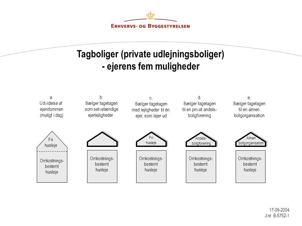 Tagboliger (private udlejningsboliger) - ejerens fem muligheder