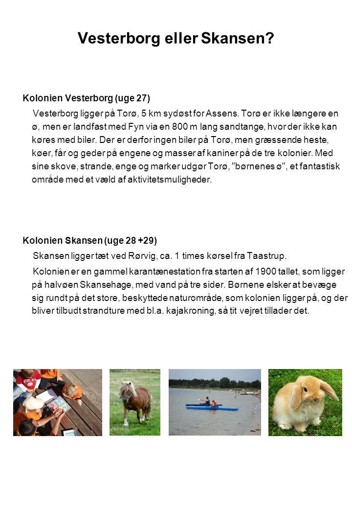 Vesterborg eller Skansen
