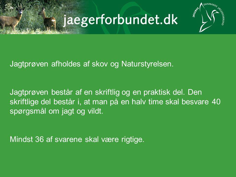 Jagtprøven afholdes af skov og Naturstyrelsen