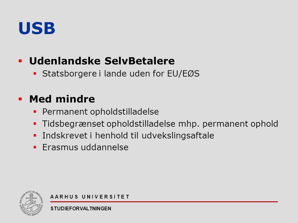 USB Udenlandske SelvBetalere Med mindre