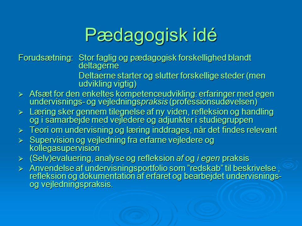 Pædagogisk idé Forudsætning: Stor faglig og pædagogisk forskellighed blandt deltagerne.