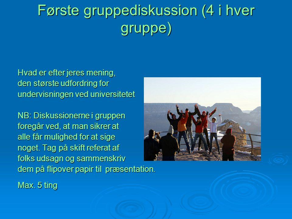 Første gruppediskussion (4 i hver gruppe)